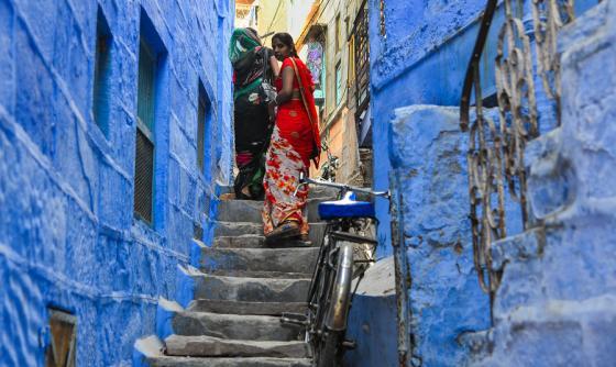 Inde : Couleurs du Rajasthan